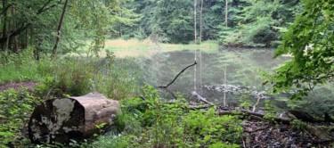 Landschaftsbild Hohenstein