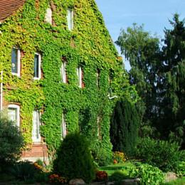 Bauernhof Friedrichsburg